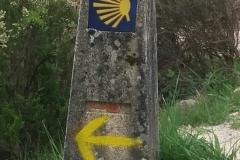 Camino Way